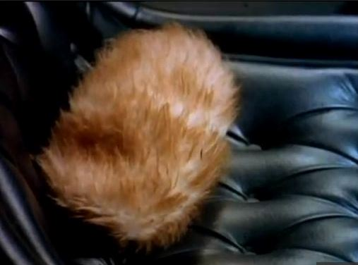 troubled tribble