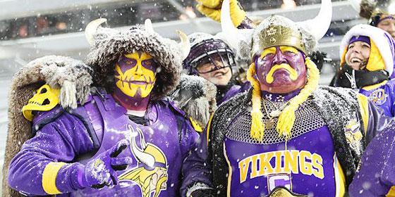 Vikings Fans 3