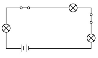 What does the diagram show? A.one battery, two light bulbs