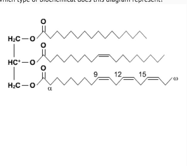 which type of biochemical does this diagram represent