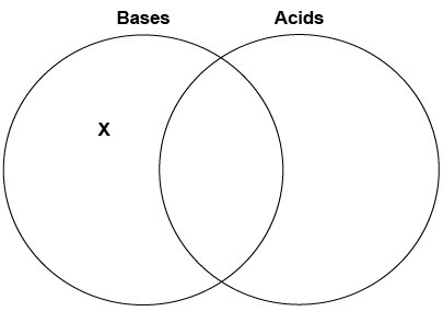 Natalia began to draw a diagram to compare bases and acids