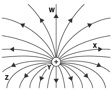 The diagram shows the electric field in the vicinity of a