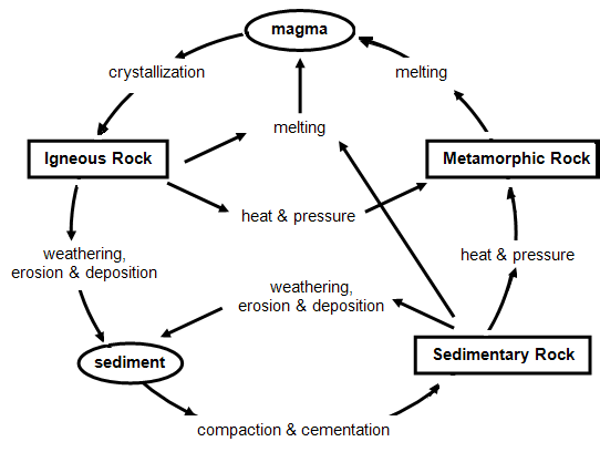 plz helpAccording to the diagram above, how are