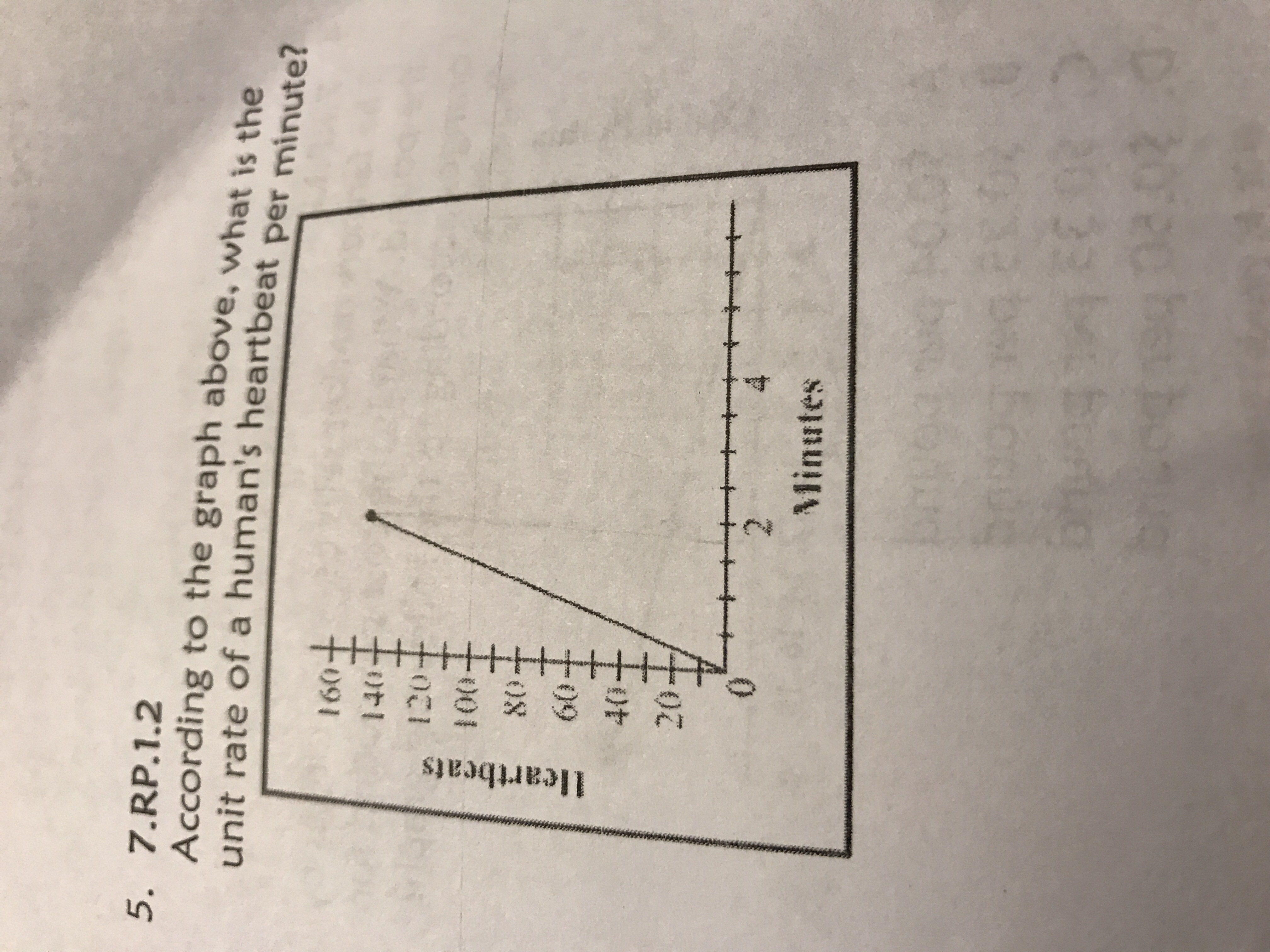 According To Graph Above What Is The Unit Rate Of A Human