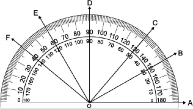 Angle E has what measurement according to the protractor