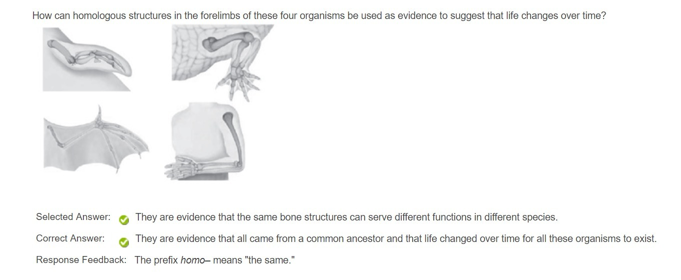 Question 4 How can homologous structures in the forelimbs