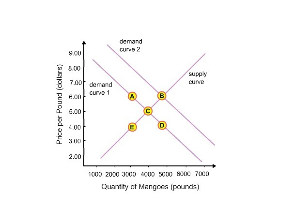 The price of mangoes is currently $5.00 per pound. At this