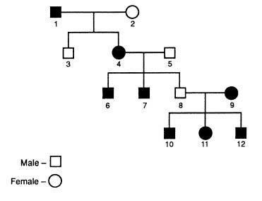 How many generations are shown in the pedigree in Figure