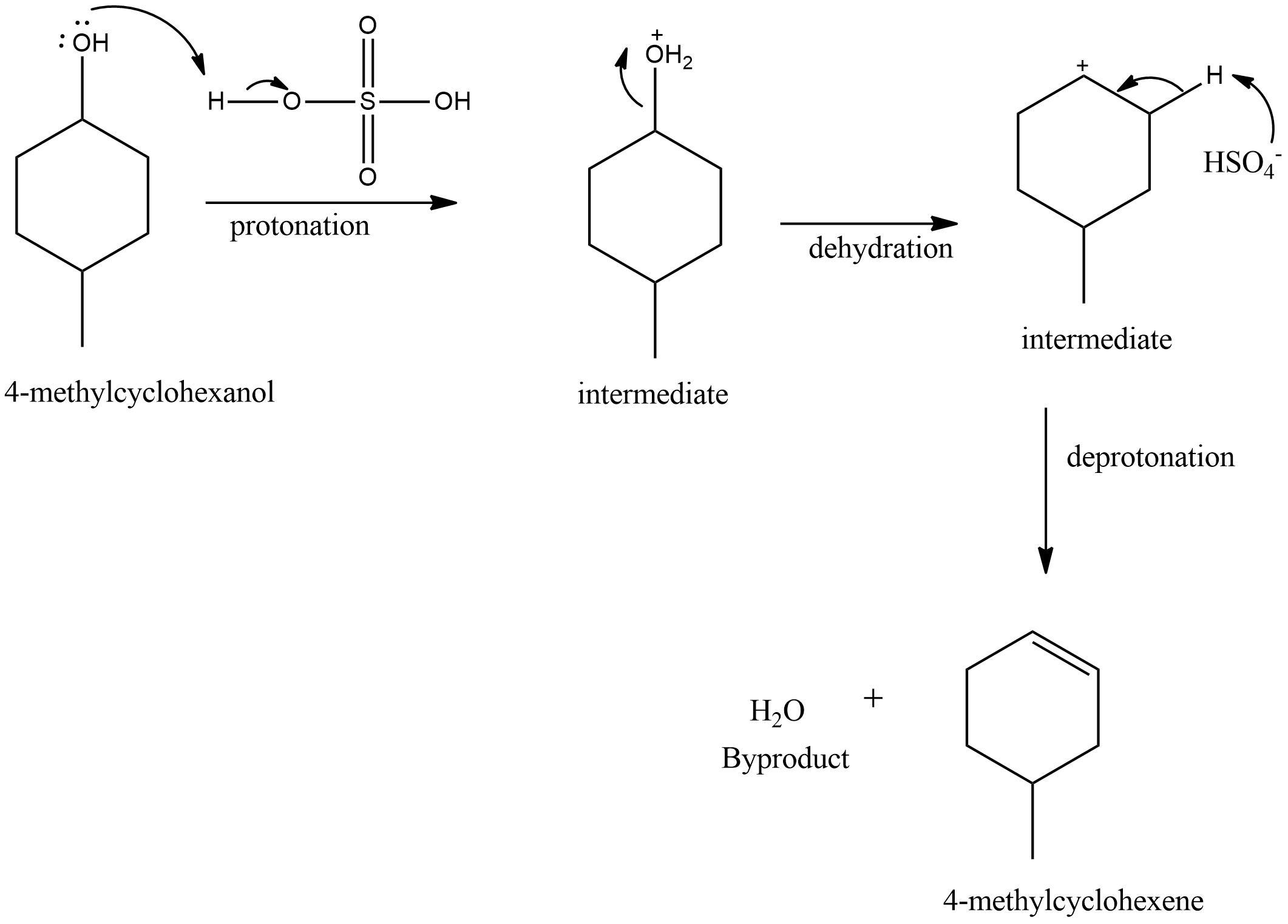 Write a reasonable and detailed mechanism for the
