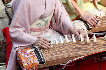 japanese ancient ceremony: Japanese women playing the traditional koto Japanese traditional instrument