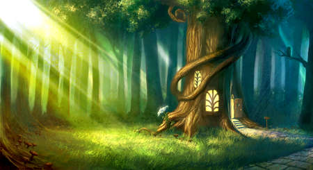 Enchanted Forest Stock Photos And Images 123RF