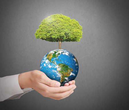 earth in human the hand  Stock Photo - 22274202