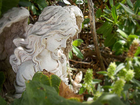 Stone Angel in the Bush Stock Photo - 62813511