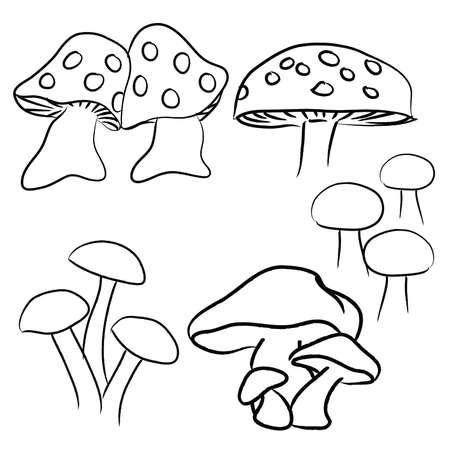 Hand Drawn Mushrooms pack, black and white 68719223