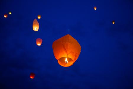 the chinese lantern flies