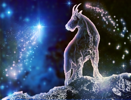 Goat is a mystical zodiac animal  Capricorn is the most stubborn sign  Feel the difference between astronomy and astrology  Stock Photo - 20395598