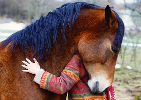 Portrait woman and horse in outdoor. Woman hugging a horse Stock Photo - 46006531