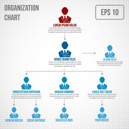 Organizational chart infographic business hierarchy boss to employee structure vector illustration stock also rh rf
