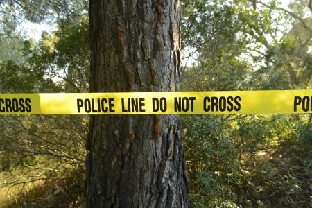 crime scene tape: Crime scene in the forest: Yellow police line do not cross tape