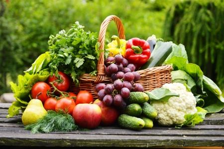 Fresh organic vegetables in wicker basket in the garden Stock Photo - 20483481