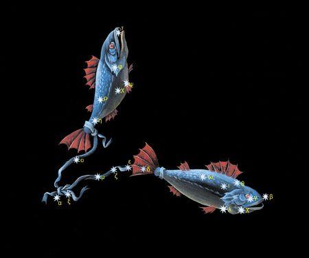 Pisces zodiac icon Stock Photo - 5499291