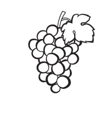 Outline Of Grapes Stock Illustrations Cliparts And Royalty Free Outline Of Grapes Vectors