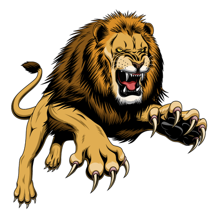 angry lion stock photos