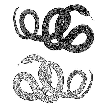 Tatouage Serpent Serpent Regle Grave Dessines A La Main Vecteur Illustraction Dornement