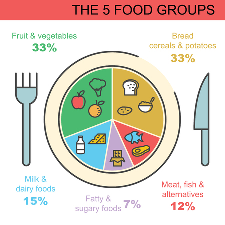 The food groups vector outline infographics design also stock photos and images rf rh
