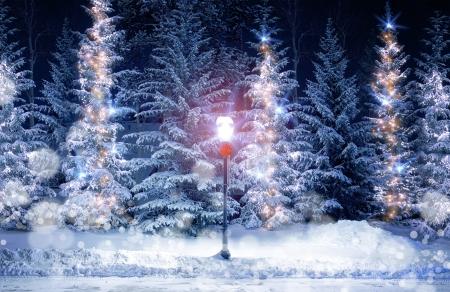 christmas scenery stock photos