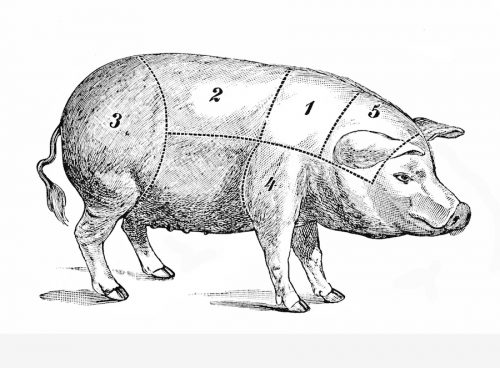 Food, old pork chart with pig and ham – Beefer