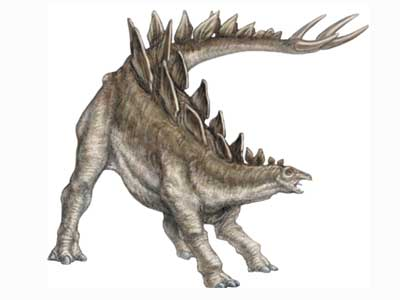 Animal With Spikes