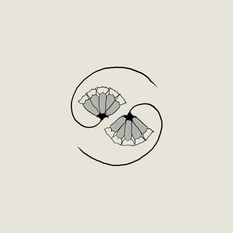 DOWNLOAD EP: Godspeed You! Black Emperor - G_d's Pee AT STATE'S END! Zip Download