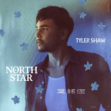 Download Tyler Shaw North Star mp3 audio download