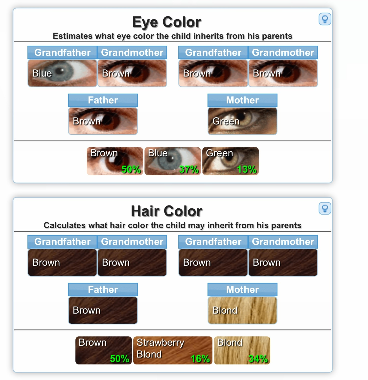 Eye Color Genetics Predictor