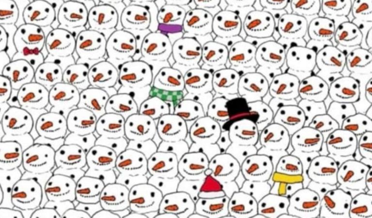Almost everybody gets it wrong on the first try: Can you spot the panda among the snowmen?