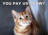 Deseja pagar agora?