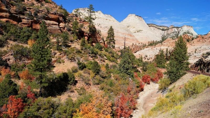 Herbst im Zion Nationalpark