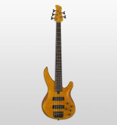trbx downloads basses guitars basses musical instruments products yamaha united states [ 1500 x 1500 Pixel ]