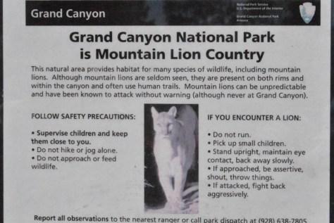 Gefährliche Gegend der Grand Canyon