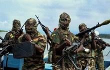 Showdown: 3 Female Suicide Bombers Killed in Borno, Nigeria
