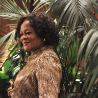 USAfricaBooks: AdaOkere Agbasimalo on her novel The Forest Dames and agenda for 2013