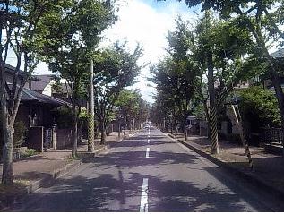 keyaki
