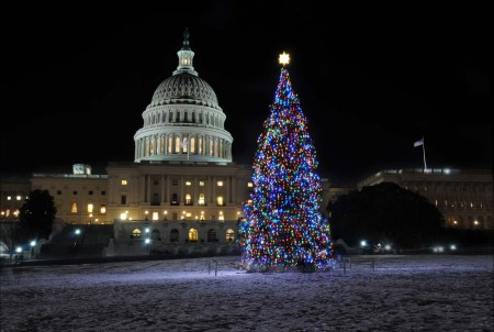 DC Holiday Lights Tour