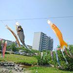 東大和市の空に泳ぐこいのぼり