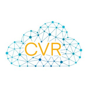 Cradlepoint Virtual Router | VA1-CVRESS