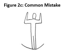 fig2c