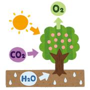 【環境技術】空気中のCO2回収、10倍速く! ~都立大が吸収物質発見~