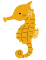 【遺伝学】泳ぎベタな「タツノオトシゴ」はどうして世界中に広がることができたのか