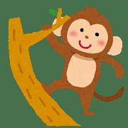 【生き物】野生アルビノチンパンジーが、生後すぐオスたちに惨殺される・・!